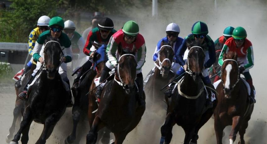 Небывалый результат: лошади из Абхазии заняли призовые места на скачках в Краснодаре