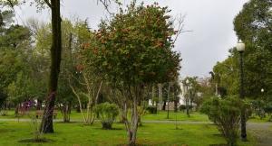 Прогноз погоды в Абхазии на среду 14 апреля