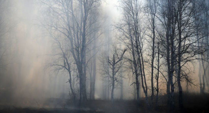 Дождь потушил все пожары в Абхазии