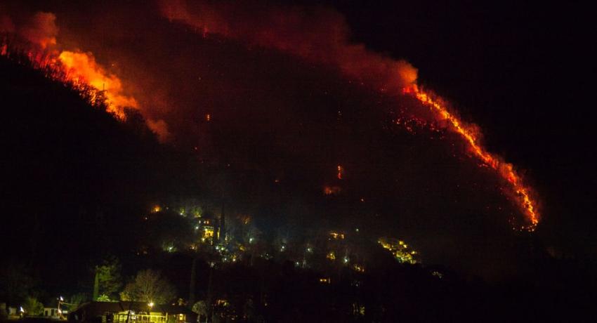 Дождь ничем особо не помог: пожары в Гагре еще не потушены